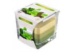 Tříbarevná vonná svíčka ve skle - Green Tea